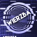 Wierzba70