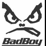 BadBoy.dev